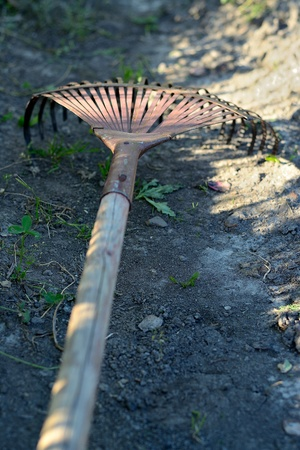 rake and leaves close up photo