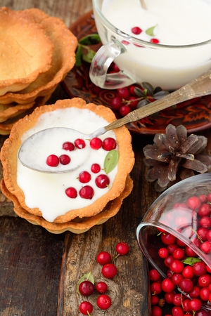 tartlet: tartlets with homemade sour cream and cranberries on a wooden table with a white tablecloth in a rustic style Stock Photo