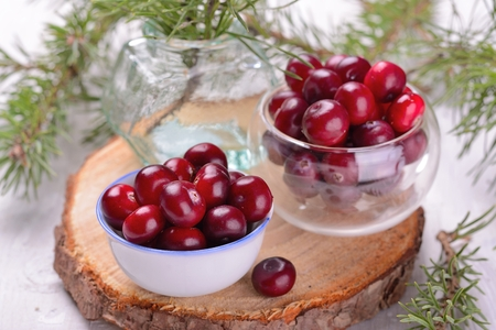 organic cranberries in the northern forest container on natural wooden table with pine branches alive selective focus. See series photo
