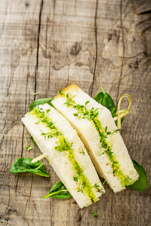 water cress: Toasts with cream of avocado and watercress. Selective soft focus Stock Photo
