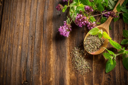 Dried oregano in a wooden spoon and twigs of fresh green oregano with flowers on dark wooden background. selective Focus