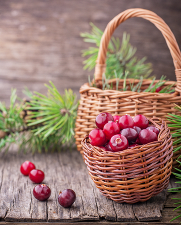 fresh cranberry cowberry on wooden background, selective focus, toned