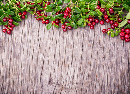 Branches of ripe red juicy cranberries on the texture wooden dark background. Top view. Copy space.
