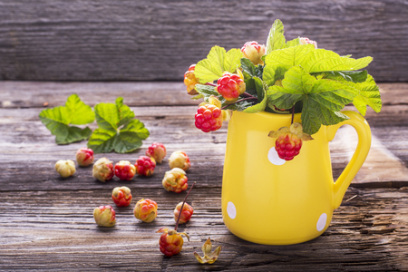 chicout�: Sprigs northern cloudberry keep pace with red berries in a ceramic mug on a simple wooden background. Useful rare berries growing in the north