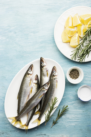 Fresh small sea fish smelt, sardine on a simple background with salt, rosemary and lemon slices. Top view. The concept of healthy sea food, Stock Photo