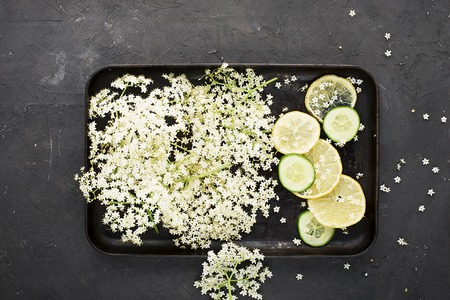 Ingredients for a healthy homemade drink: elderberry flowers, lemon slices on a vintage black tray for making a recipe. Top view Standard-Bild - 109064714