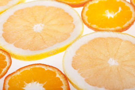 Fresh slices of citrus fruits in studio backlight Stock Photo - 13212045