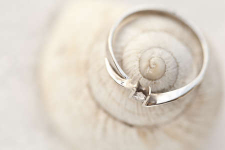 Beautiful engagement ring on a shell Stock Photo - 13212472