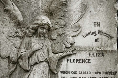 angel cemetery: Old cemetery angel sculpture made of stone