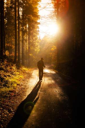 Adult tourist portrait in autumn woods, photo taken in polish Beskidy mountains, Krawcow Wierch
