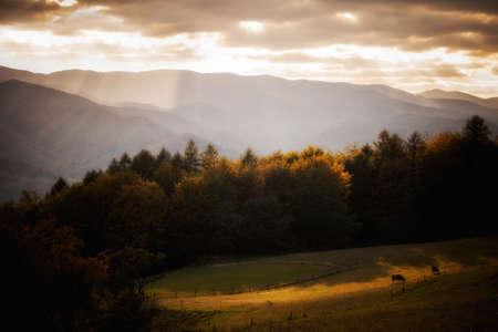 Autumn landscape in polish Beskidy mountains, Jaworzyna Krynicka