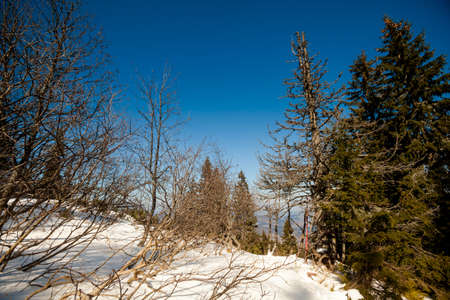 gora: Beautiful winter sunny photo taken in Beskidy mountains - Mala Babia Gora - Babiogorski Park Narodowy Stock Photo