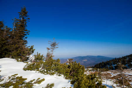 Beautiful winter sunny photo taken in Beskidy mountains - Mala Babia Gora - Babiogorski Park Narodowy photo
