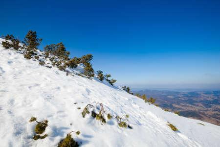 Beautiful winter sunny photo taken in Beskidy mountains - Mala Babia Gora - Babiogorski Park Narodowy photo