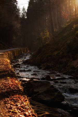 Beautiful autumn sunny photo taken in Beskidy mountains - Barania Gora. Photo taken during spring, but it still looks like autumn. photo