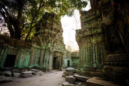 Architecture of old buddhist Ta Prohm temple in Angkor Archeological park . Monument of Cambodia - Siem Reap. Tomb Rider movie scenery. photo