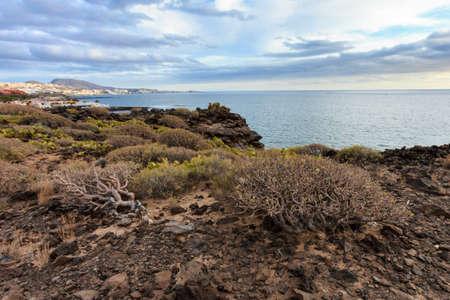 adeje: Summer seascape on tropical island Tenerife, Canary in Spain. Costa Adeje view Stock Photo