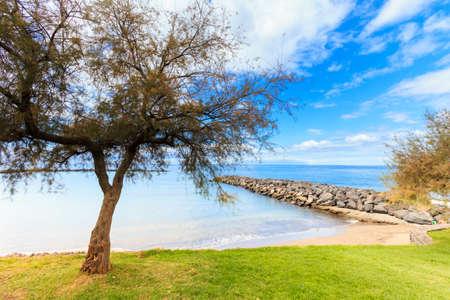Summer seascape on tropical island Tenerife, Canary in Spain. Playa de Las Americas