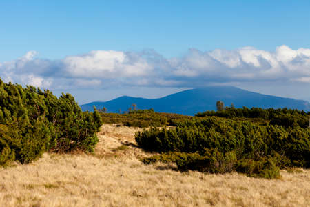 Beautiful autumn woods landscape taken in polish Beskidy mountain, top of Pilsko - Beskid Zywiecki. Babia Gora view