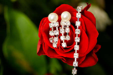 Beautiful earings and necklace jewellery of the Bride before wedding - romantic detail