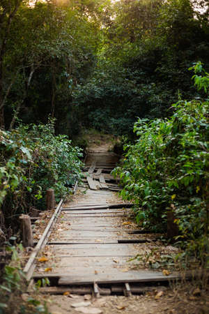 Landscape of remote Don Khone island in Laos. View with broken wooden bridge taken in wild jungle on four thousands islands on Mekhong river in south east asia during summer.