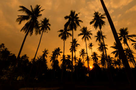 Summer landscape on tropical koh Kood island  in Thailand. Landscape with sea taken from Ao Tapao beach during sunset.