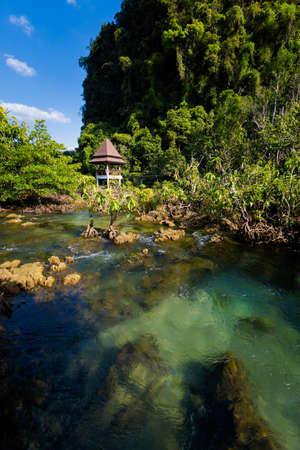 Tha Pom Khlong Song Nam in Krabi in southern Thailand. Landscape taken in beautiful mangrove reserve in south east Asia.