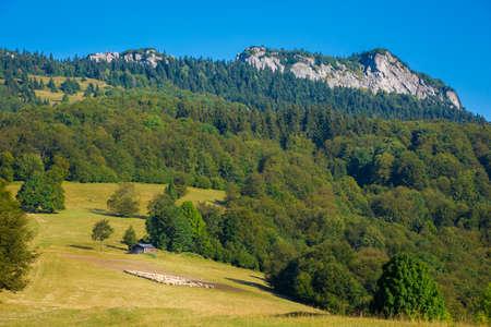Beautiful path to Borisov and Ploska - in slovakian Velka Fatra mountains. Sunny autumn panorama.