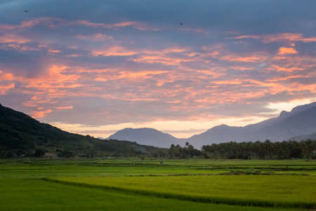 Beautiful evening photo of Cam Ranh fields during sunset with mountains in the background, Vietnam. Khanh Hoa province. 版權商用圖片