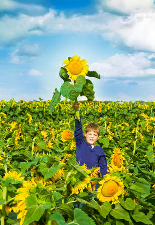 distinction: Boy holding a special sunflower in hand