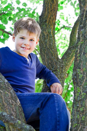 Smiling boy sitting on the tree photo