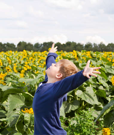 manos levantadas al cielo: Muchacho joven feliz en campo de girasol con los brazos levantados Foto de archivo