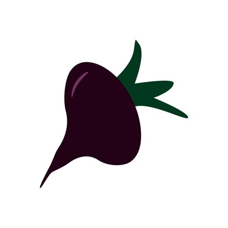 Purple beets on white background.Flat vector illustration. Fresh harvest. Healthy food is organic.