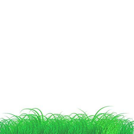 Green Grass Frame Isolated Transparent background.Vector green grass texture illustration: natural, organic, bio, eco label and shape.Concept Ground land. Isolated.