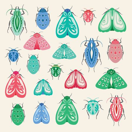 Colourful moths and beetles illustration. A collection of vector insects ideal for clip art or print projects.