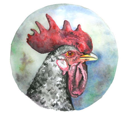 Cock head with red comb. Watercolor illustration isolated on white background.