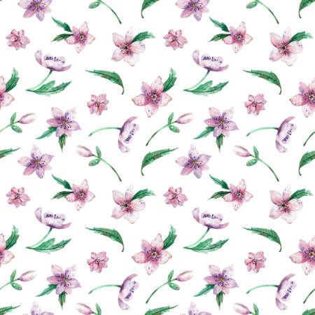 Patrón floral acuarela transparente sobre un fondo blanco. Hermoso fondo de verano para su diseño e impresión. Foto de archivo