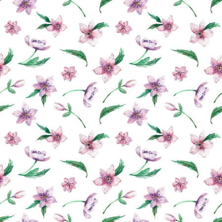Seamless watercolor floral pattern on a white background. Beautiful summer background for your design and print. Stock Photo