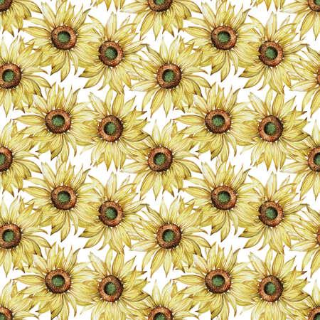 Watercolor sunflower seamless pattern. Hand-drawn botanical illustration. Summer flower background. Banque d'images - 130501781