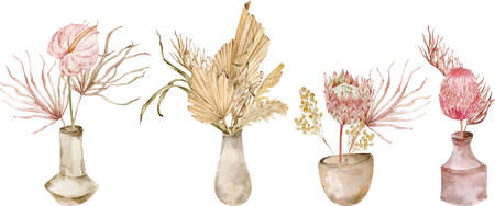 Collection of tropical bouquests with anthurium and protea in ceramic vases. Watercolor hand-drawn set of exotic dried palm leaves bouquets isolated on the white background. Boho wedding. Фото со стока