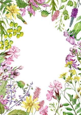 Watercolor wildflowers frame. Field flowers template. Meadow herbs and flowers.