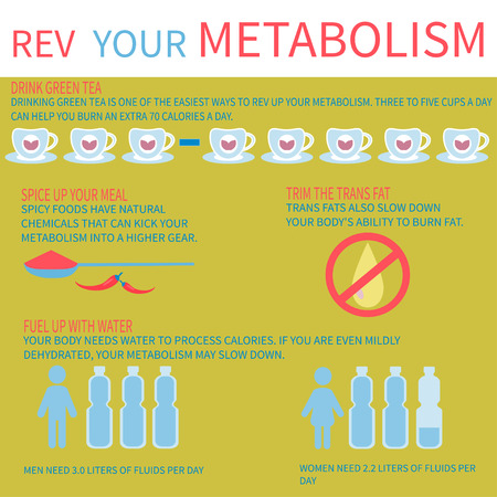 There are other ways to improve your metabolism. Metabolism infographic. Illustration