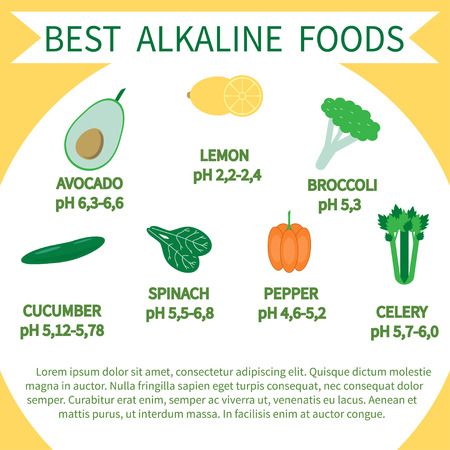 List of Alkaline Foods . Alkaline foods are foods that raise the the amount of oxygen that your blood takes in. Stock Vector - 71191922