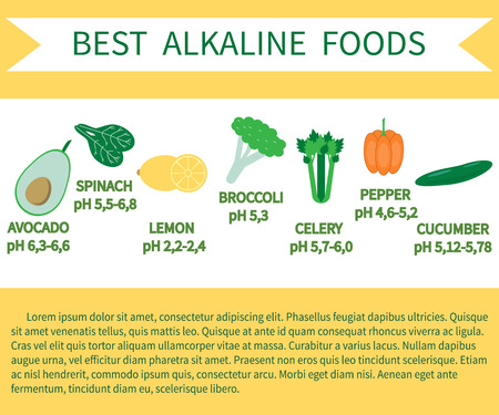List of Alkaline Foods . Alkaline foods are foods that raise the the amount of oxygen that your blood takes in. Stock Vector - 71190792