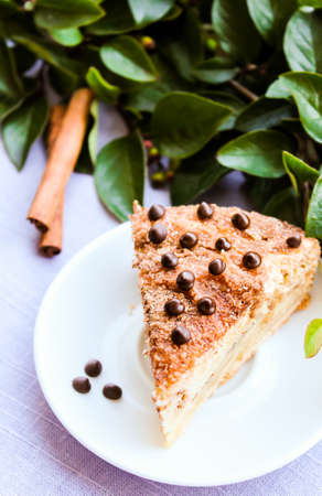 Piece of traditional american coffee cake with brown sugar, cinnamon, chocolate chips or drops on a dessert plate, selective focus. Easter cake. Homemade cake. Macro food. Stock Photo
