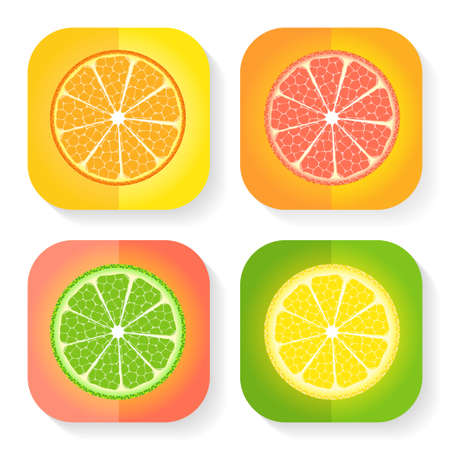 Illustration of Citrus fruit icons Vector