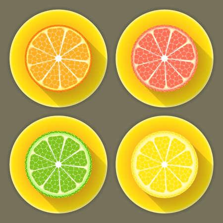 Illustration of Citrus fruit icons set Vector