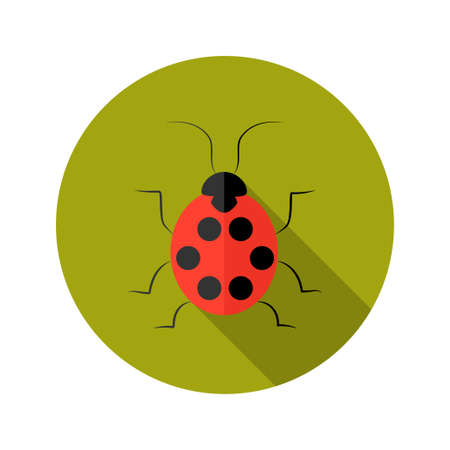 malicious software: Illustration of Red Lady Bug flat icon