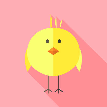baby chick: Yellow chicken. Flat stylized illustration with shadow Illustration