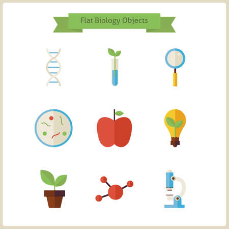 phytology: Flat School Biology and Science Objects Set. Flat Styled Vector Illustrations. Back to School. Science and Education Set. Collection of Chemistry Botany Phytology Biology and Research Objects isolated over white.